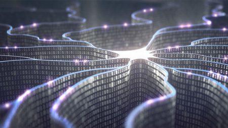 17434 Біологи перетворили людські клітини в крихітні біокомп'ютери