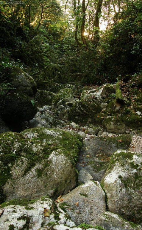 17623 Фото і опис: Ущелина річки Ціхерва