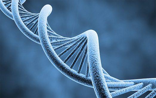 18249 Що таке генетичний тест?