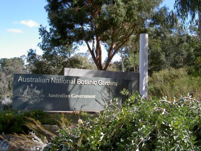 22860 Фото і опис: Національний Ботанічний Сад Австралії