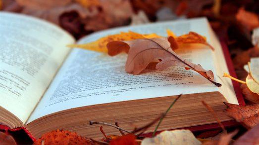 22516 Десять цікавих книг про самотність
