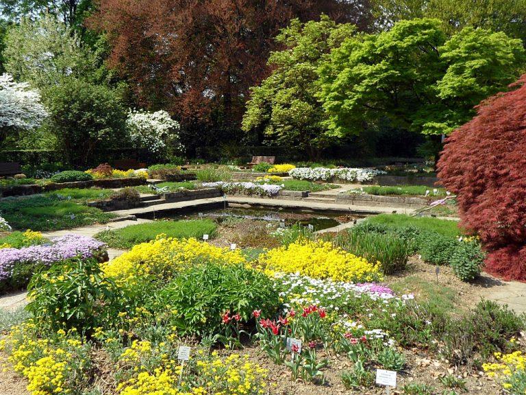 33723 Фото і опис: Ботанічний сад Лінца