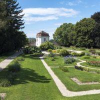 33727 Фото і опис: Ботанічний сад Віденського університету