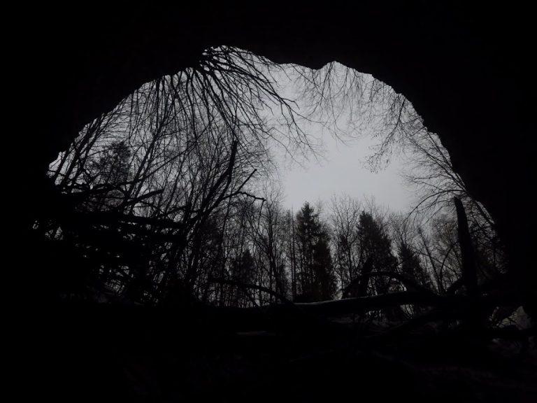 35227 Тарас Шевченко – Інтродукція