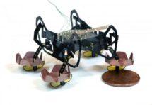 Робот-тарган HAMR, створений гарвардскими вченими, навчився плавати і ходити під водою