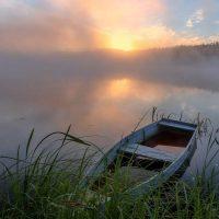 41393 Володимир Сосюра – Любіть Україну, як сонце, любіть…