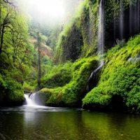 41477 Олесь Гончар – Бура трава без води…