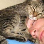 44332 Топ-10 фотографий с домашними животными, которых хочется обнимать и тискать