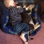 46528 27 добрых фотографий, доказывающих, что вашему ребенку обязательно нужен домашний питомец