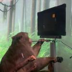 46872 Neuralink показала обезьяну, которая играет в Pong силой мысли